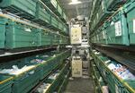 warehouse_automation2.jpg