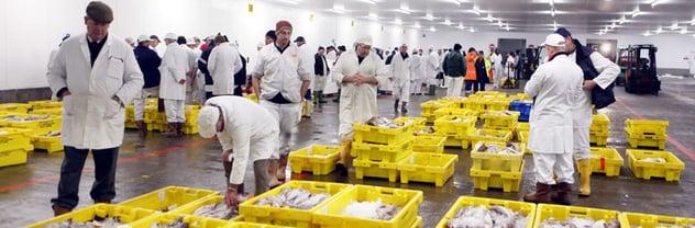 british_fish_market.png