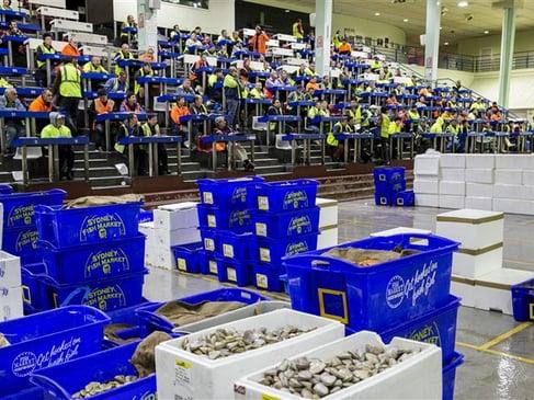 sydney_fish_market.jpg