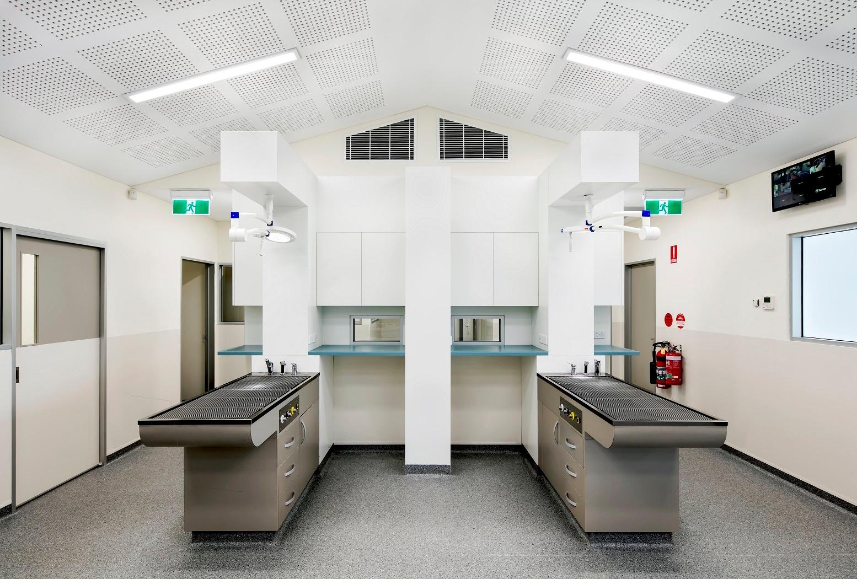 Gawler Animal Hospital_Flexible Clear PVC Swingdoors