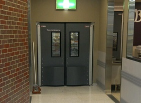 4500 Thermal Swing Doors
